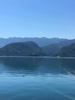 Rowing lanes
