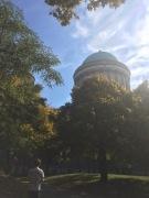 Sunny Basilica