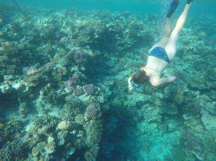 Protect our seas